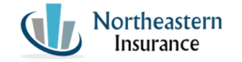 Northeastern Insurance